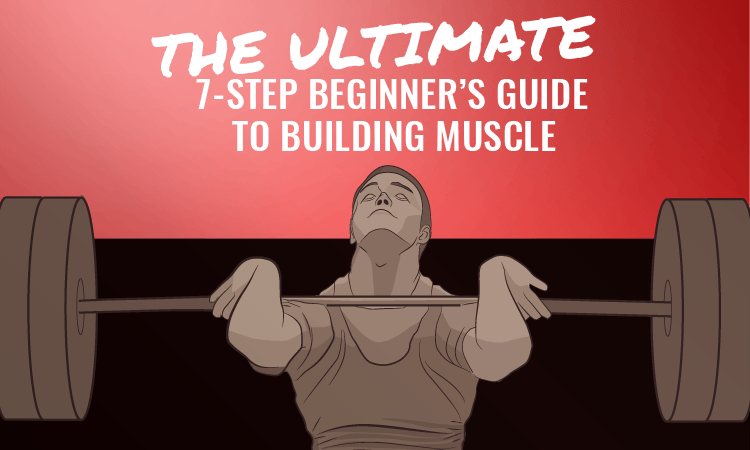 beginners workout build muscle